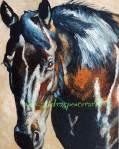 blackhorseportrair16x20