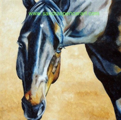blackhorse12x12