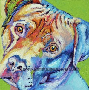 pitbullrainbow10x10