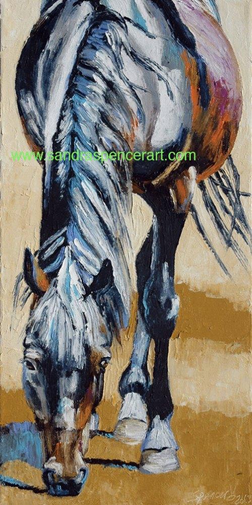 blackhorse12x24