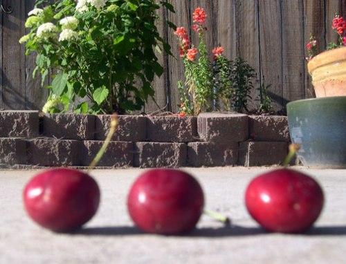 cherry3