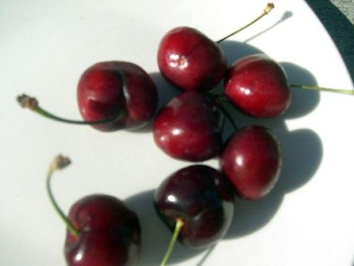 cherry5