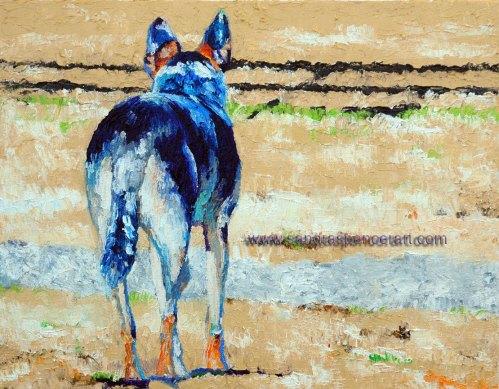 cattledog11x14