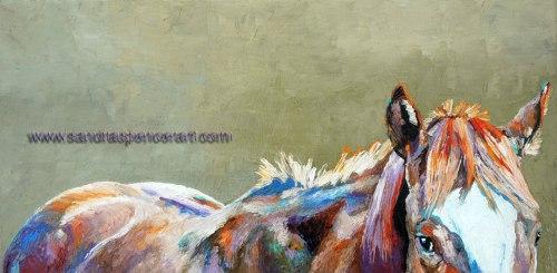 horsepeek12x24