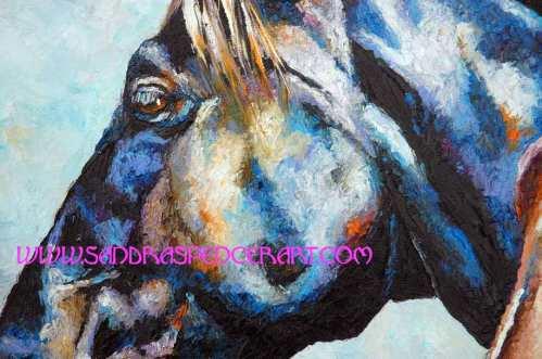 horseprofilesclose2
