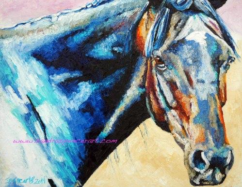 blackhorse11x14