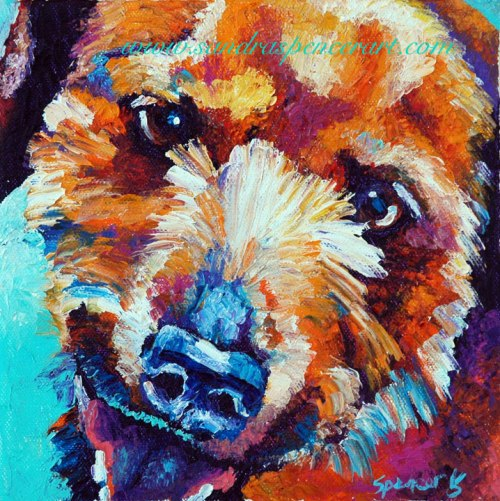 jackrussell8x8