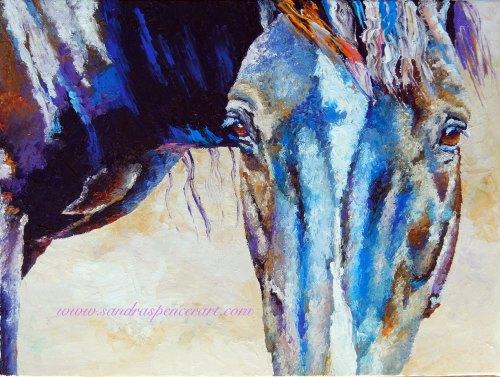 blackhorse12x16