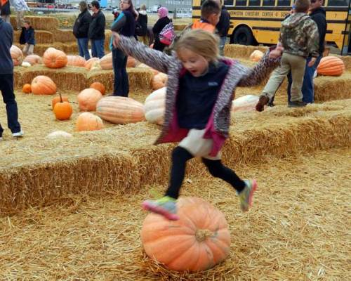 pumpkinjump