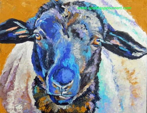 sheep11x14