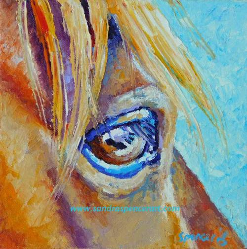 horseeyelashes8x8