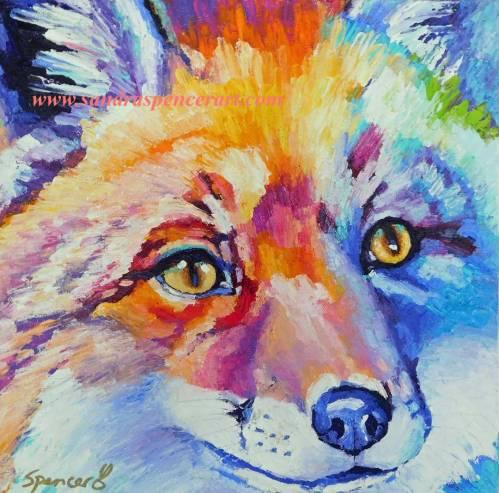 fox12x12d
