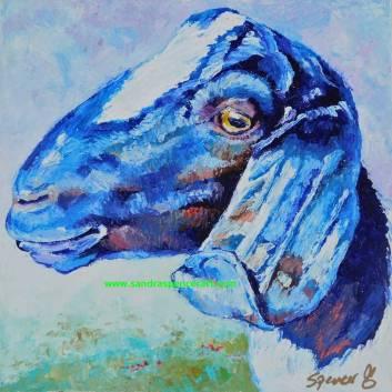 blueboer10x10