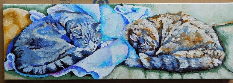 cats8x24